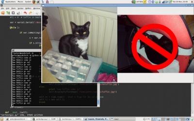 catspygtk_400